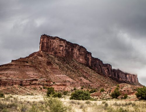 Dolores River Canyon Wilderness